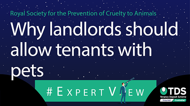 "#ExpertView: RSPCA: ""Why landlords should allow tenants with pets"""